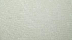 Czochra na wody powierzchni pluśnięcia kroplach Biały tło swobodny ruch zdjęcie wideo