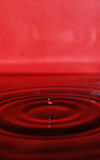 czochry czerwona woda Obraz Royalty Free