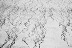 Czochry w piasku 2 Zdjęcie Stock