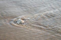 Czochry w wodzie morskiej jako przyp?yw wychodz? wzory w piasku i robi? gdy ocean ?lobi pla?? zdjęcia stock