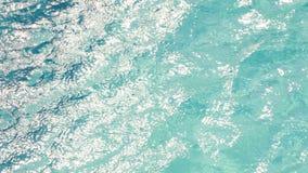 Czochry w wodzie w basenie z słonecznym odbiciem Widoku kąt 45 stopni zbiory wideo