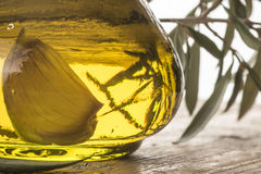 czosnek natchnąca nafciana oliwka Obraz Stock