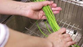 Czosnków krótkopędy myją pod wodą bieżącą od faucet nad zlew Kobieta szefa kuchni ręki naciera zielone flance czosnek w wacie zbiory