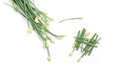 Czosnków szczypiorków kwiat Pokrajać Obrazy Stock