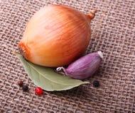 Czosnku goździkowy, cebula na burlap tle Fotografia Stock