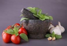 czosnku moździerza pomidor Fotografia Stock