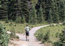 Czterdzieści dwa roczniaka zdrowego mężczyzna wycieczkuje w góra Dżdżystym parku narodowym, Waszyngton zdjęcie royalty free