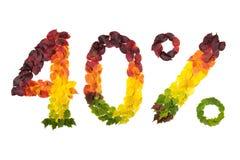 Czterdzieści procentów daleko robić z jesień liśćmi zdjęcie royalty free