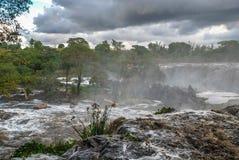 Czternaście spadków Thika Kenja Afryka Zdjęcie Royalty Free