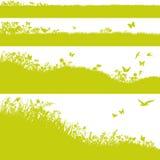 Cztery łąki, trawa i kwiatu, ilustracji