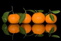 Cztery świeża mandarynka na czarnym tle zdjęcie stock