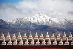 Cztery Chuanta obszarów trawiastych Midui śniegu jawna góra Zdjęcie Royalty Free