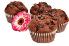 Cztery czekoladowego kwiatu i muffins Zdjęcie Stock