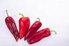 Cztery czerwonego pieprzu jako warzywo na białym tle obrazy stock