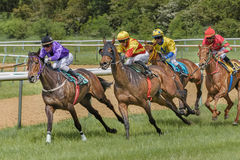 Cztery dżokeja na horseback Wyścigi konny 22 2015 Sierpień Magdeburski, Niemcy Obraz Royalty Free