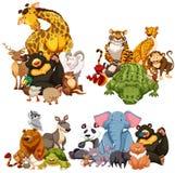 Cztery grupy dzikie zwierzęta ilustracja wektor