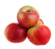 Cztery jabłka zdjęcie stock