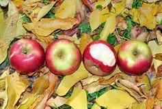 Cztery jabłko b Zdjęcia Royalty Free