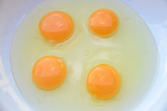 cztery jajka Zdjęcia Royalty Free