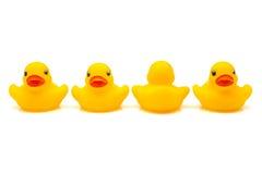 Cztery kaczek rubbe Fotografia Royalty Free
