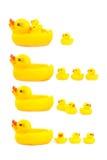 Cztery kaczki gumowej na białym tle Obrazy Royalty Free