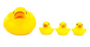 Cztery kaczki gumowej na białym tle Fotografia Stock