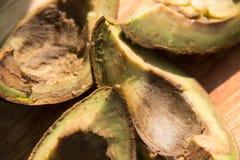 Cztery kawałka przegniły avocado na drewnianego tła odgórnym widoku Zdjęcie Stock