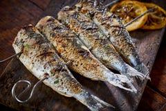 Cztery korzenna piec na grillu świeża ryba na skewers Zdjęcia Royalty Free