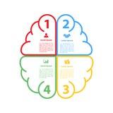 Cztery kroka jeździć na rowerze infographic móżdżkowego kształta układu pojęcie lub jeździć na rowerze Zdjęcie Stock