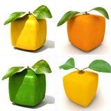 Cztery Kubicznej owoc royalty ilustracja