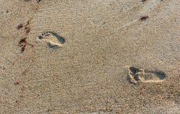 Cztery lat odcisku stopy w piasku Zdjęcie Stock