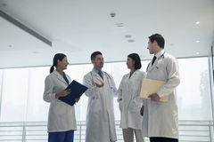 Cztery lekarki stoi, opowiada i ono uśmiecha się w szpitalu, zdjęcia stock