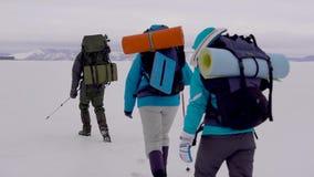 Cztery młodzi ludzie iść wycieczkować w śnieżnej pustyni zdjęcie wideo
