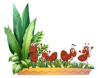 Cztery mrówki royalty ilustracja