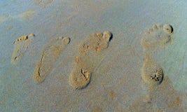 Cztery odcisku stopy w piasku jeden rodzina zdjęcie royalty free