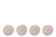 Cztery olchy saw cięcia na białym tle Obraz Royalty Free