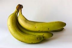 Cztery organicznie banana Obraz Royalty Free