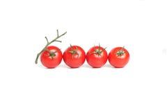 cztery organicznie czerwony pomidor Zdjęcie Stock