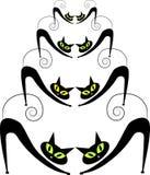 Cztery pary czarni koty Zdjęcie Royalty Free