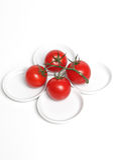 cztery pomidoru Zdjęcia Royalty Free