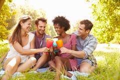 Cztery przyjaciela relaksują wpólnie pić w wsi Zdjęcia Stock