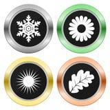 Cztery sezonów koloru okrąg Zdjęcie Stock