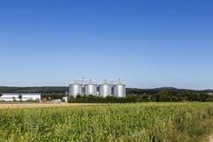 Cztery srebnego silosu w polu pod niebieskim niebem Obraz Royalty Free