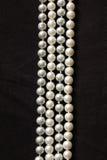 Cztery sznurka biała żołnierz piechoty morskiej perła Obraz Royalty Free