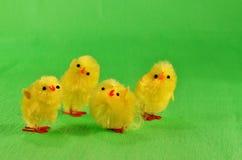 Cztery Wielkanocnego kurczątka Obraz Stock