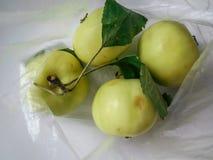 Cztery zielonego jabłka z liśćmi w celofanowej torbie zdjęcie stock