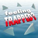 Czuć Łapać w pułapkę słowo rekinu żebra Okrąża ocean Fotografia Stock
