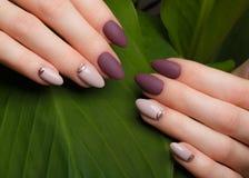 Czuły staranny manicure na kobiet rękach na zieleni opuszcza tło Gwoździa projekt obrazy royalty free