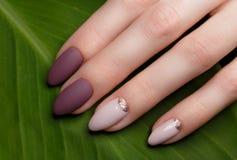Czuły staranny manicure na kobiet rękach na zieleni opuszcza tło Gwoździa projekt obraz royalty free