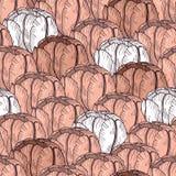 Czuły tulipanowy bezszwowy wzór tło łatwy redaguje kwiat warstwy Obrazy Stock